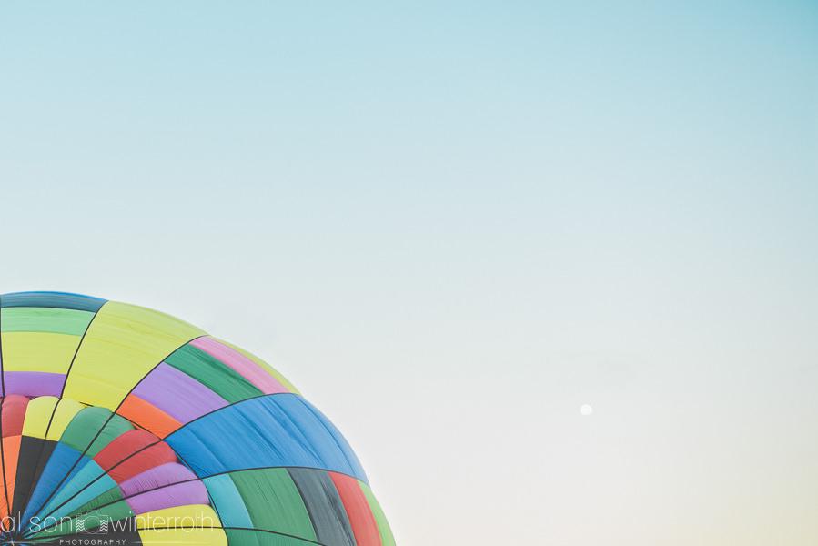 Tampa_Hot_Air Balloons_Web_WM-57