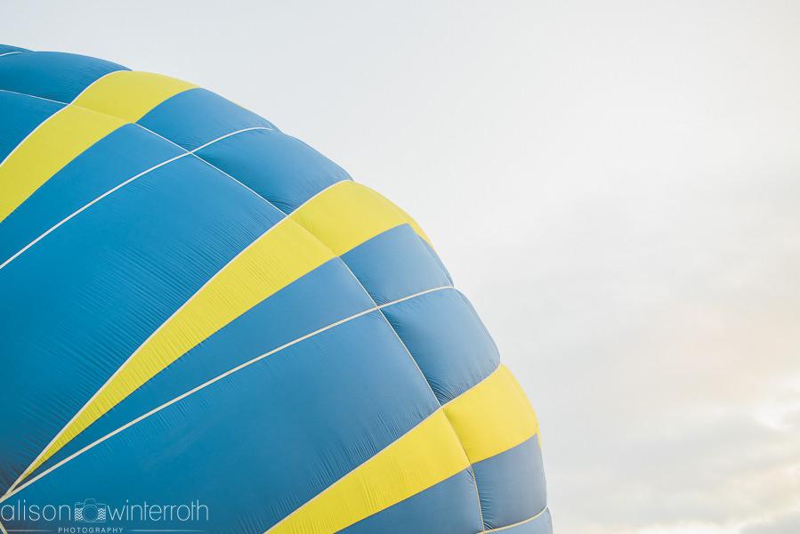 Tampa_Hot_Air Baloons_Web_WM-62