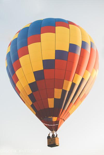 Tampa_Hot_Air Baloons_Web_WM-74