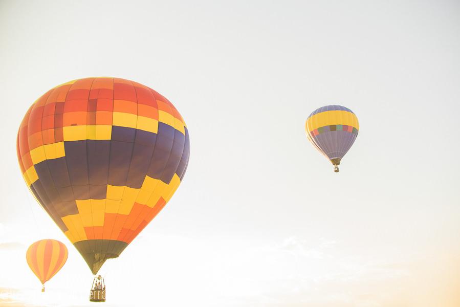 Tampa_Hot_Air Baloons_Web_WM-81