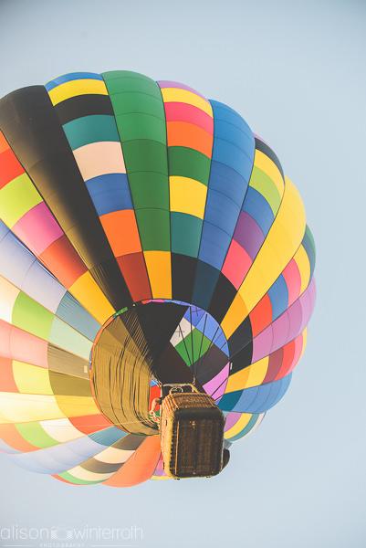 Tampa_Hot_Air Balloons_Web_WM-84