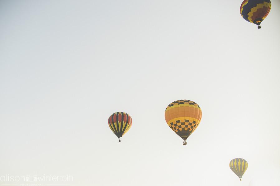 Tampa_Hot_Air Baloons_Web_WM-86