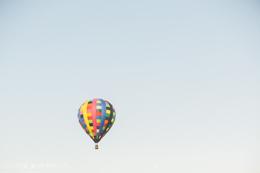 Tampa_Hot_Air Baloons_Web_WM-88