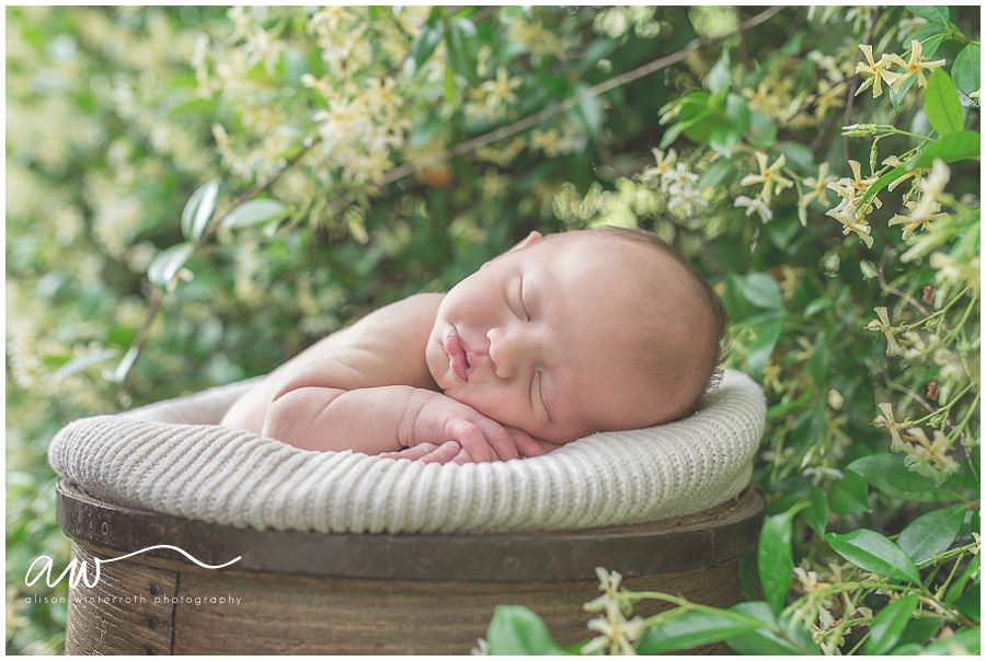 South Tampa Newborn Photographer_0037