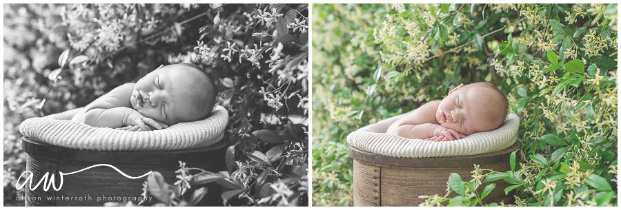 South Tampa Newborn Photographer_0038