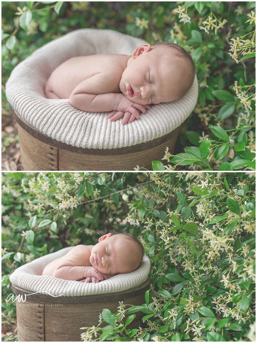 South Tampa Newborn Photographer_0039