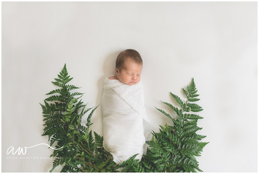 Unique newborn photograph of baby laying with ferns in Tampa photography studio is a gorgeous fine art image.