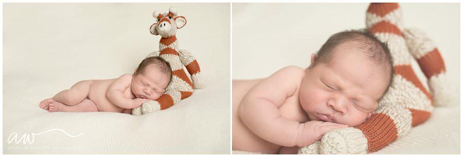 Newborn Photographer Tampa FL_0136