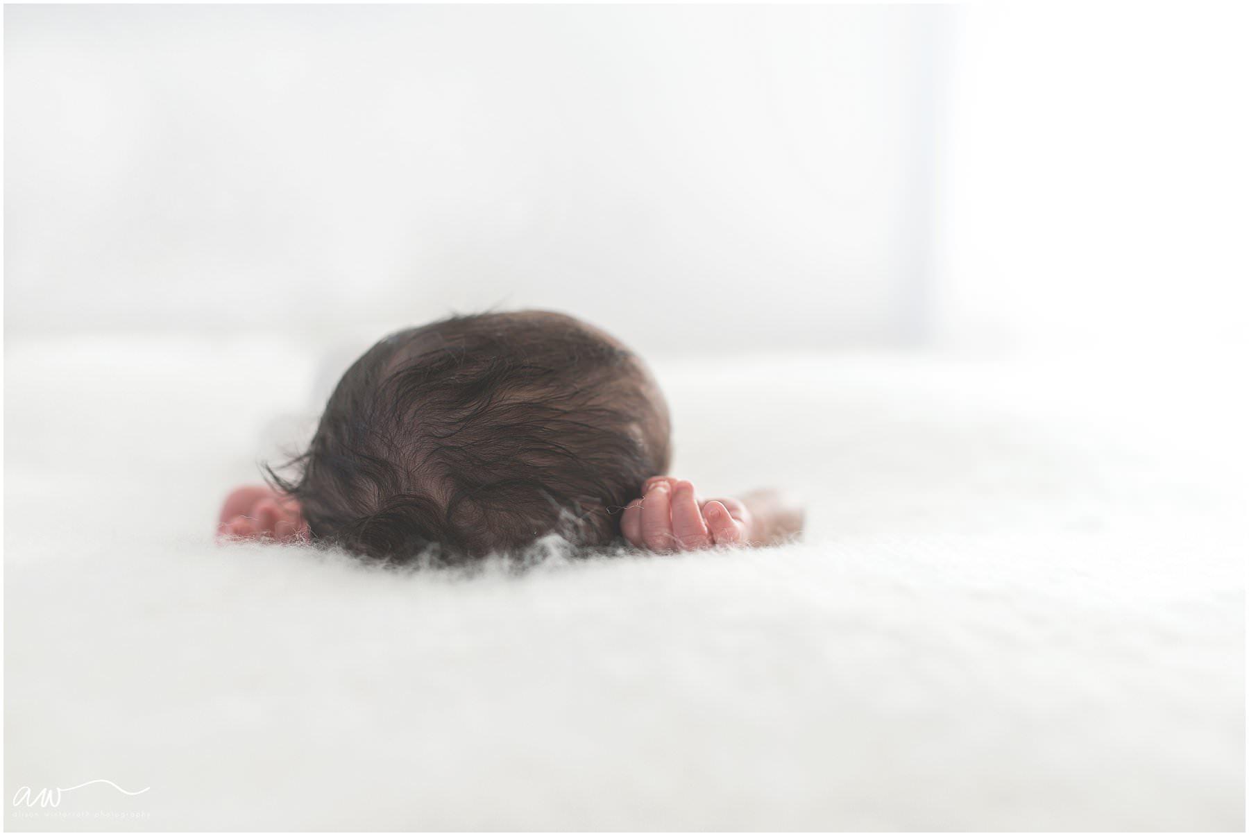 organic newborn photography