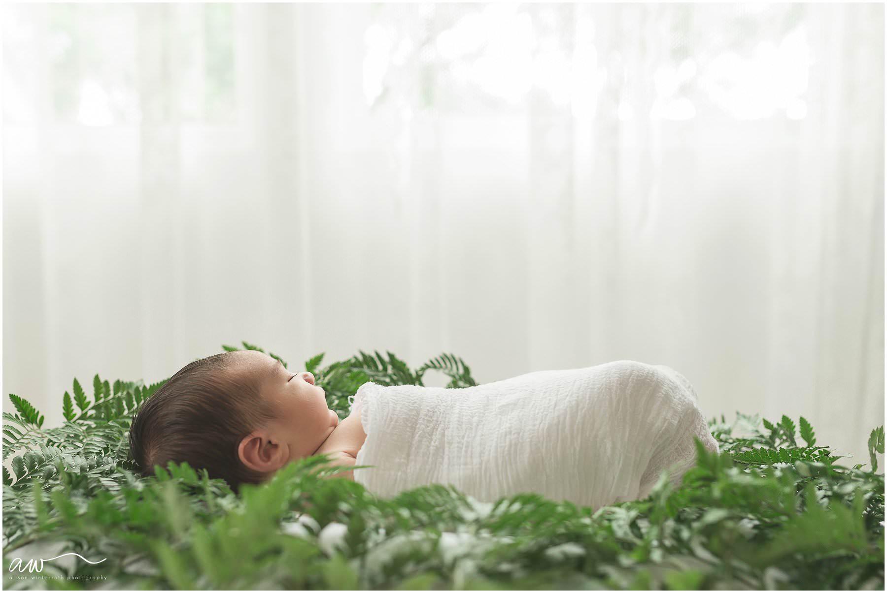 A natural newborn photographer