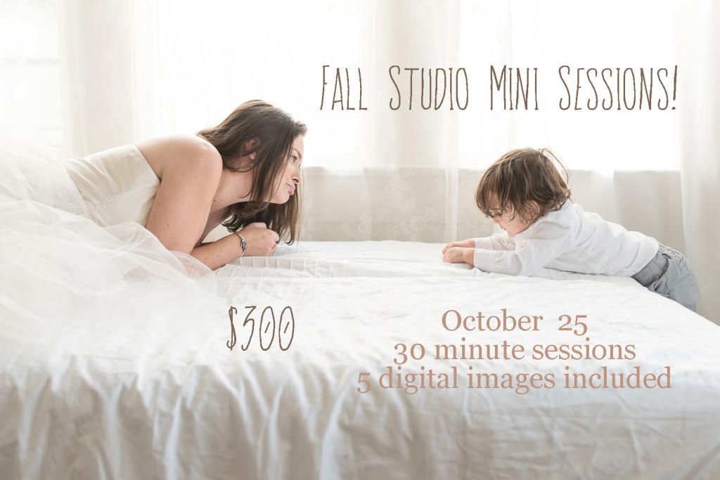 Fall Studio Minis 15