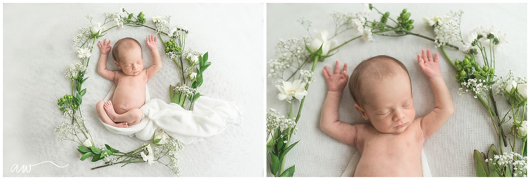 organic newborn photographer