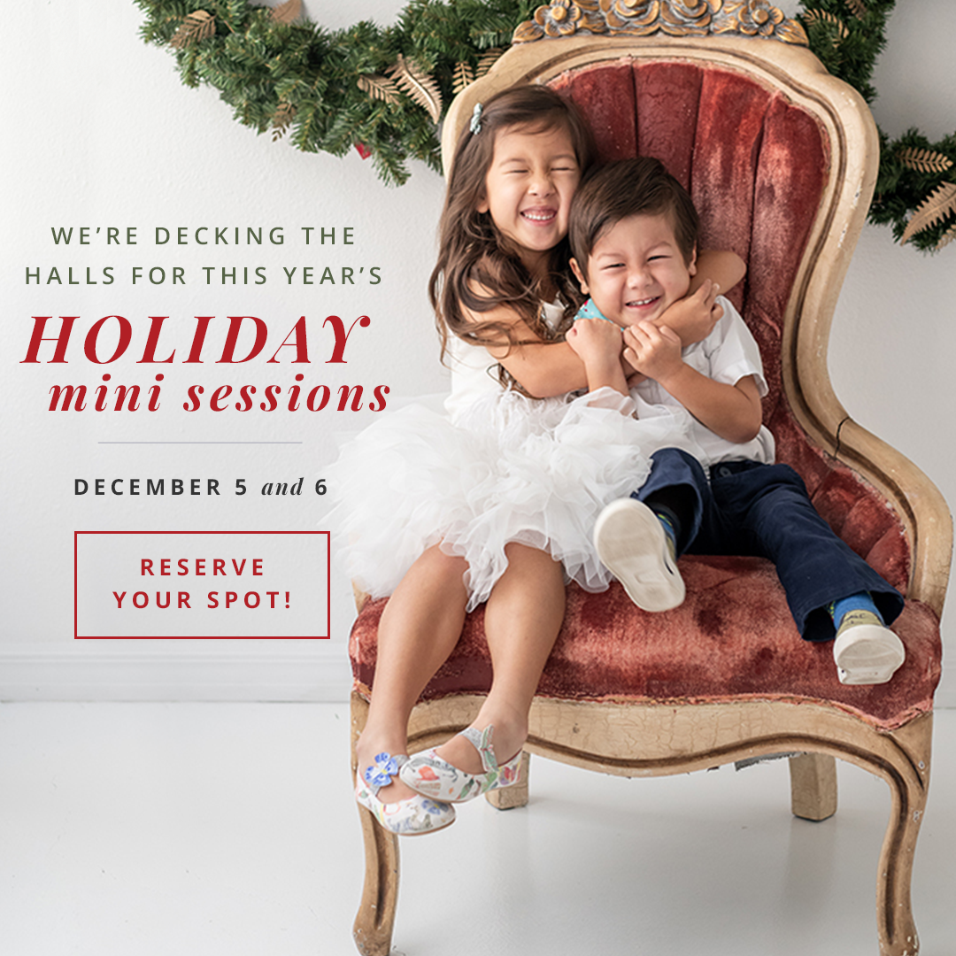 tampa holiday mini sessions